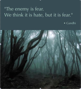 gandhi-on-fear1